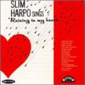 Sings Raining In My Heart album cover