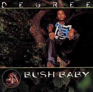 Bush Baby album cover