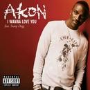 I Wanna Love You (Single) album cover