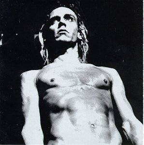 We Will Fall: The Iggy Pop Tribute album cover