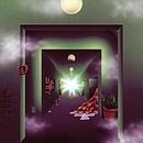 A Weird Exits album cover