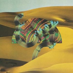 Django Django album cover