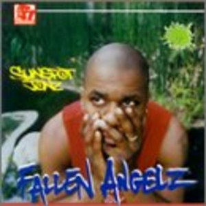 Fallen Angelz album cover