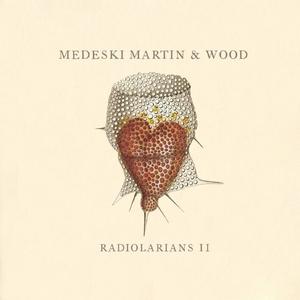 Radiolarians II album cover