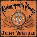 Joint Venture album cover