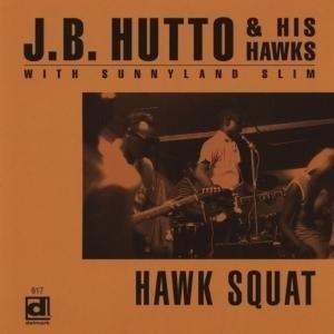 Hawk Squat album cover