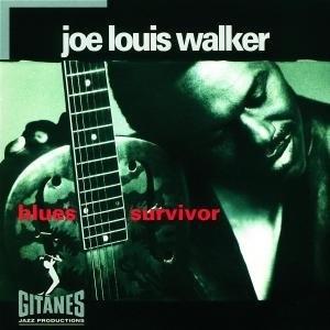 Blues Survivor album cover