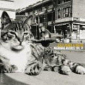Mermaid Avenue Vol.2 album cover