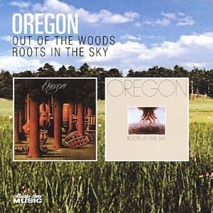 Out Of The Woods~ Roots In The Sky album cover