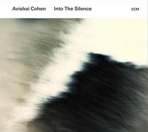 Into The Silence album cover