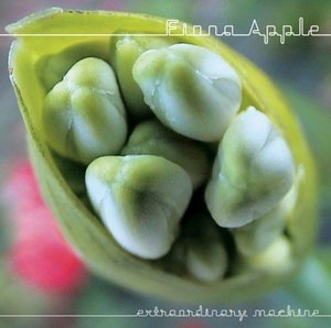 Extraordinary Machine album cover