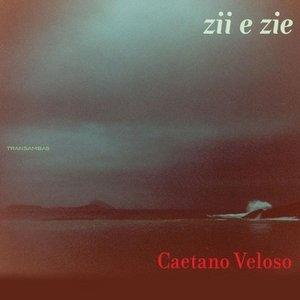 Zii E Zie album cover