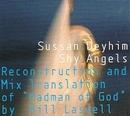 Shy Angels: Reconstructio... album cover
