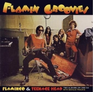Flamingo & Teenage Head album cover