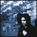 Blunderbuss album cover