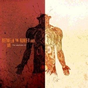 The Anatomy Of album cover