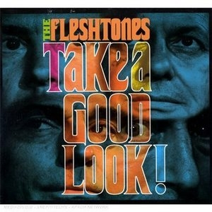 Take A Good Look! album cover