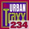 ERG Music: Nu Urban Traxx, Vol. 234 (March 2017) album cover