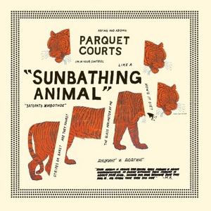Sunbathing Animal album cover