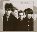 Echo And The Bunnymen (Ex... album cover