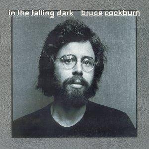 In The Falling Dark album cover