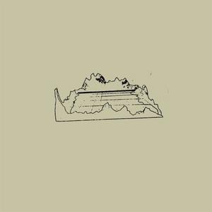 Veneer album cover