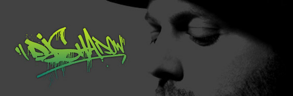 DJ Shadow image