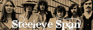 Steeleye Span image