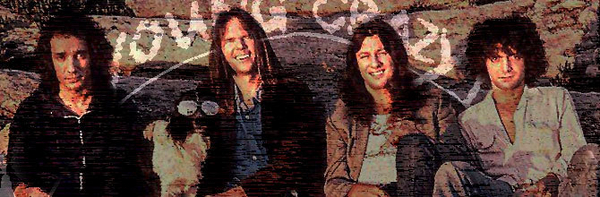 Neil Young & Crazy Horse image