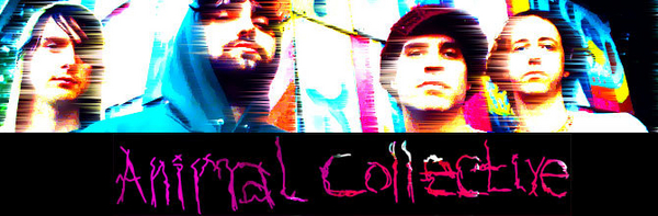 Animal Collective image