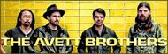 The Avett Brothers image