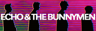 Echo & The Bunnymen image