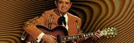 Merle Travis image