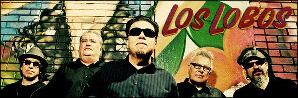 Los Lobos featured image