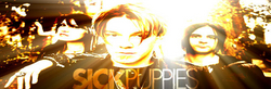 Sick Puppies image