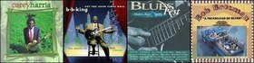 Blues Of The 90's